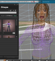 Mesh Distorted On Avatar In Wire Frame.jpg